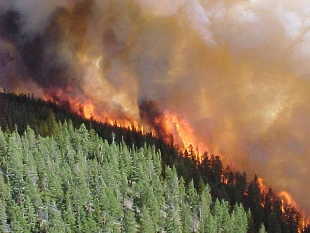Image result for Cariboo Chilcotin fire images