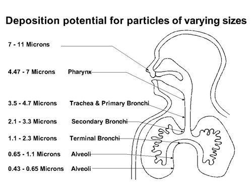 particle size diagram