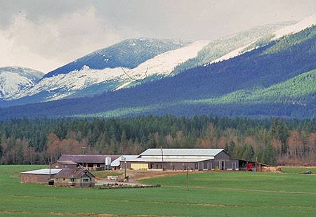 Alberni Valley Farm